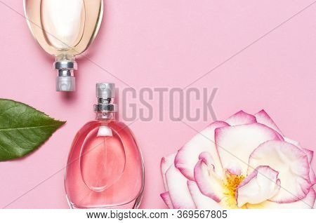 Beautiful Composition With Perfume And Flowers. Perfume Bottles, Rose Flowers Petals Green Leaves On