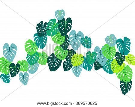 Aquamarine Tropical Jungle Leaves Vector Scatter. Philodendron Or Monstera Plant Summer Background.