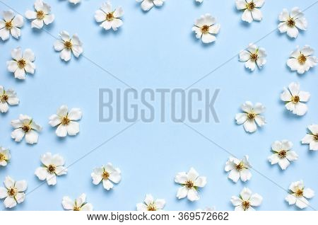 Frame From Beautiful Spring White Flowers On Blue Background Flat Lay Top View Copy Space. Spring Na
