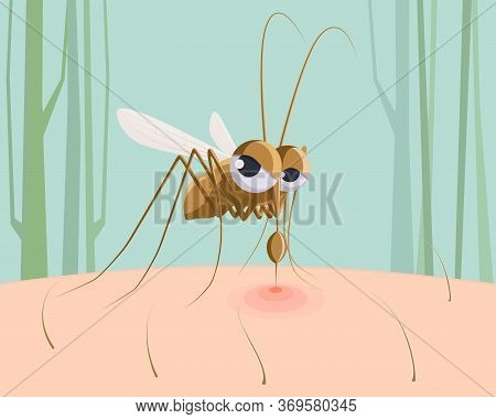 Mosquito Sucking Blood. Funny Pest Insect, Mosquito Bite Red Mark On Skin Cartoon Vector Illustratio