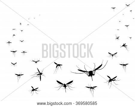 Flying Mosquitoes Silhouettes Group. Flying Insects Swarm Spreading Diseases Dangerous Infection And