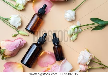 Creating Homemade Cosmetics With Natural Extracts. Serum With Roses Petals. Skin Care Concept. Natur