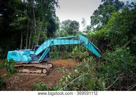 Deforestation. Logging. Excavator fells trees in rainforest