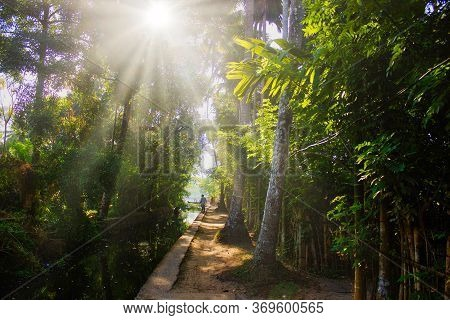 A Sunshine View Of Backwaters From A State Named Kerala Located In Southern Part Of India