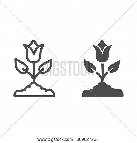 Tulip Line And Solid Icon, Spring Flowers Concept, Tulip Bud With Leaves Sign On White Background, T