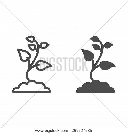 Seedling With Many Leaves Line And Solid Icon, Nature Concept, Seeds Sprout In Ground Sign On White