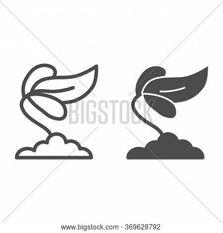 Iris Flower Line And Solid Icon, Floral Concept, Spring Flower Blossom Sign On White Background, Iri