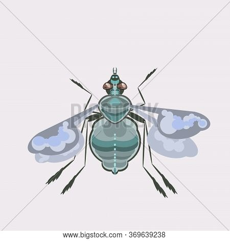 Fly Is A Nasty Buzzing Insect Vector Illustration.