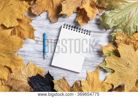 Spiral Notepad And Pen Lies On Vintage Wooden Desk With Bright Foliage. Flat Lay Composition With Au