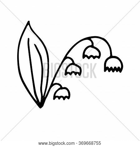 Simple Doodle Hand Drawn Style. Stylized Drawing Of Lilies Of The Valley. Spring Flower, A Symbol Of