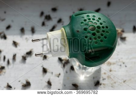 Fumigator Standing On The Window Sill Among A Big Quantity Of Dead Flies