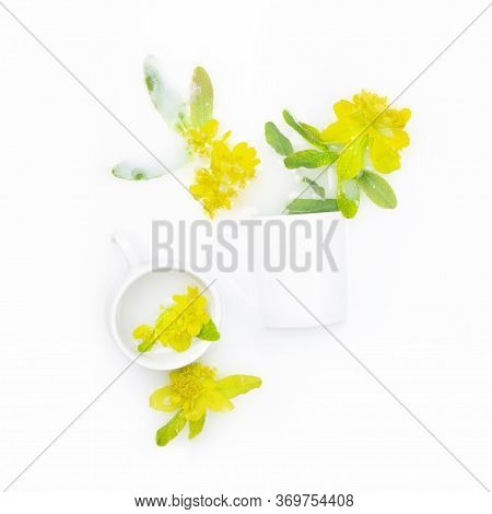 Spurge Flowers In White Bowls Float In Milk. Copy Space, Flat Lay. The Concept Of Purity, Tenderness