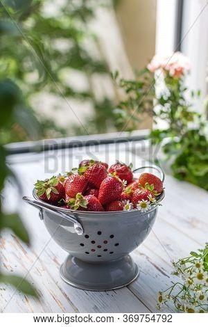Summer Berries Harvest, Local Market - Ripe Strawberries In Gray Colander