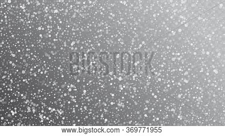 Falling Snow On Gray, Vector. Advertising Frame, New Year, Christmas Weather. Falling Snowflakes, Ni