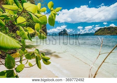 Leaves And Secluded Beach With View To Pinagbuyutan Island. El Nido, Palawan, Philippines