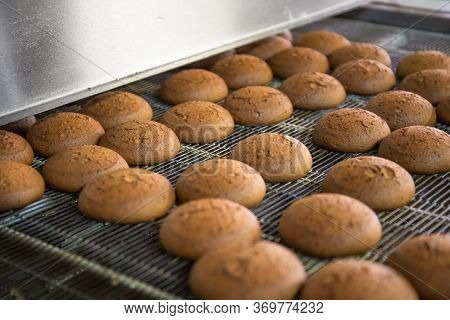 Cakes On Conveyor Belt In Factory, Confectionery Or Dessert Sweet Food.