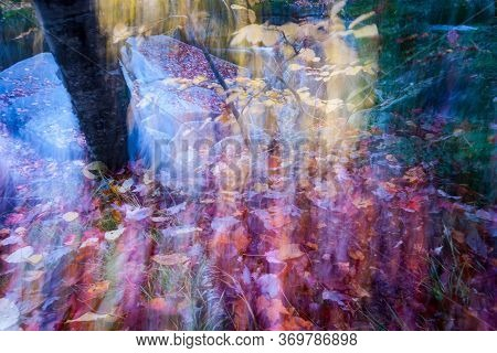 Abstract Fall Colors In Intentional Blur Giving Mystical Or Magical Effect.