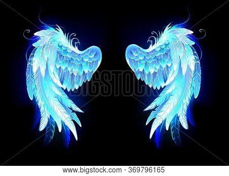 Blue, Glowing, Folded, Stylized Angel Wings On Black Background.