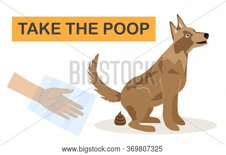 Clean Up After Your Dog. Vector Illustration Of A Dog Owner Cleaning The Lawn With A Scoop And A Pap