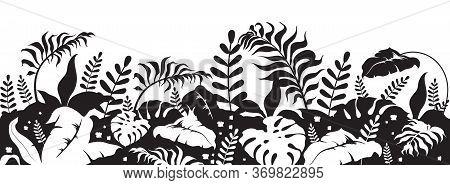 Tropical Foliage Black Silhouette Vector Illustration. Wild Vegetation. Botanical And Herbal Decorat