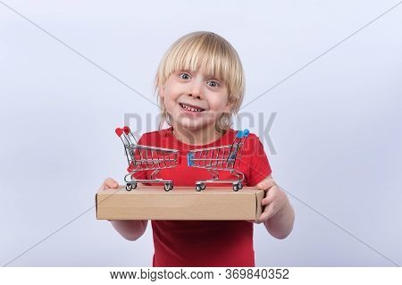 Joyful Fair-haired Boy Holding Box And Toy Shopping Cart. Buy Online, Home Delivery.