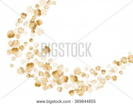 Gold Seashells Vector, Golden Pearl Bivalved Mollusks. Aquarium Scallop, Bivalve Pearl Shell, Marine