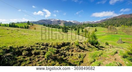 Rural Landscape In Mountains. Beautiful Green Summer Scenery. Trees And Fields On The Rolling Hills.