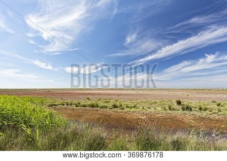 Typical Landscape In The Southern Camargue District, South France