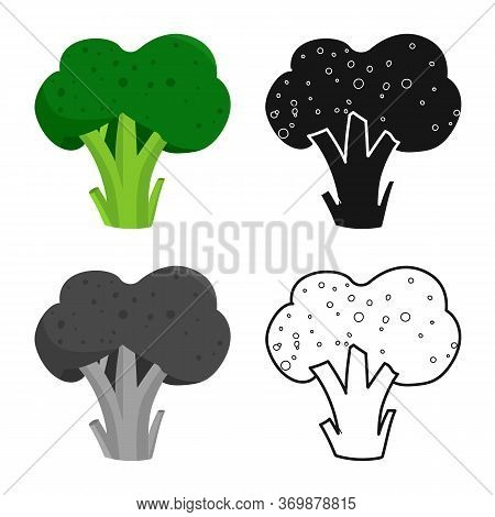 Vector Illustration Of Broccoli And Vegetables Icon. Set Of Broccoli And Food Stock Vector Illustrat