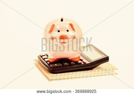 Accounting Software. Finances And Investments. Piggy Bank Pink Pig And Calculator. Accounting And Fa