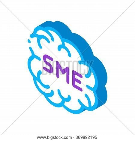 Human Brain Sme Business Icon Vector. Isometric Sme Direction Of Thinking, Mind Anatomy Organ Sign.