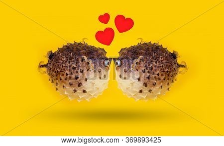 Funny Happy Kissing Day. Couple Of Fish On Vivid Yellow Background With Small Red Hearts From Kiss.