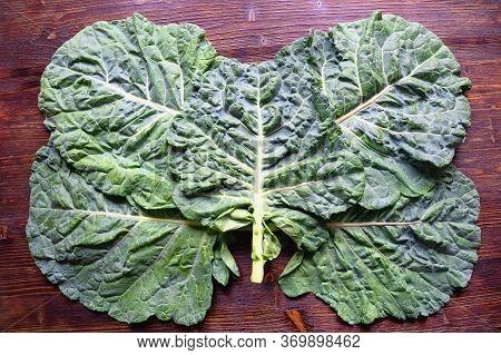 Rastan ( Collard Greens, Collards ) - Popular Leafy Vegetables In Balkan Cuisine. Five Leaves Of Rus