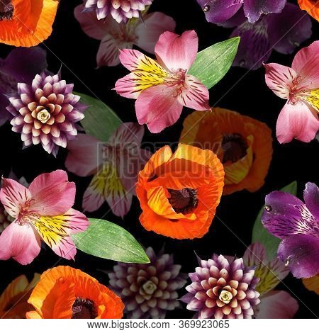 Beautiful Floral Background Of Alstroemeria, Poppy And Guzmania. Isolated