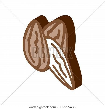 Cocoa Beans Icon Vector. Isometric Cocoa Beans Sign. Color Isolated Symbol Illustration