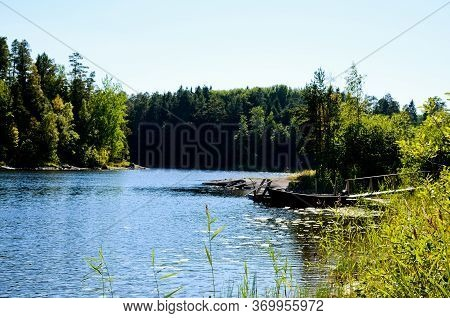 Forest Landscape Of A Lake With Blue, Calm Water On A Clear, Sunny Day. On The Shore Of The Lake Is