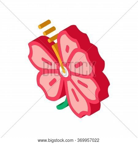 Hibiscus Flower Icon Vector. Isometric Hibiscus Flower Sign. Color Isolated Symbol Illustration