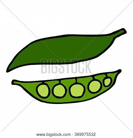 Green Pea Pod With Peas. Hand Drawn Outline Doodle Icon. Colorful Isolated On White Background. Vect