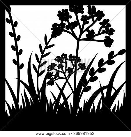 Template Of Frame With Grass Isolated On White Background, Vector Illustration. Cut Out Thick Herb P