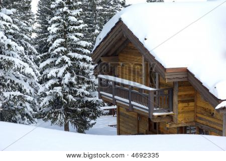 Chalet In The Forest