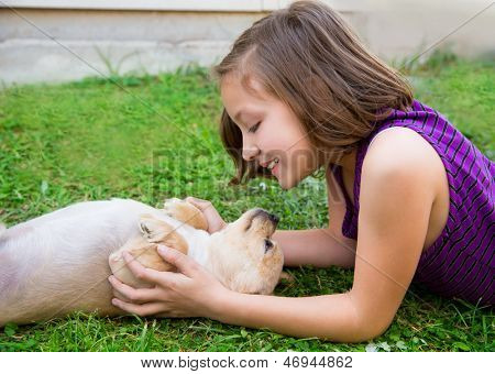 children girl playing with chihuahua dog lying on backyard lawn poster