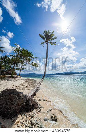 Abandoned palm beach