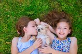 twin sisters playing with chihuahua dog lying on backyard lawn poster