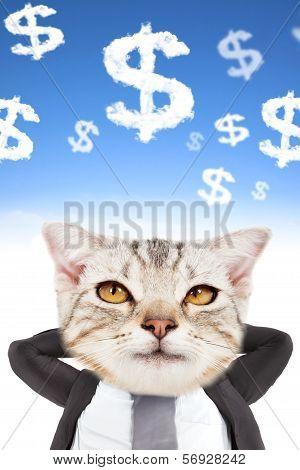 Businessman And Cat Head Thinking Money