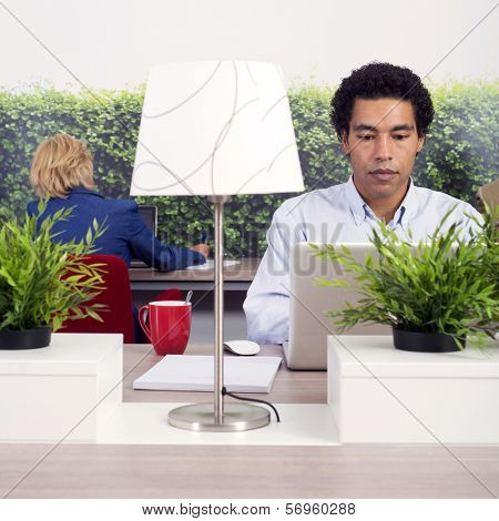 people working behind laptops in a shared, or flexible, working space in a modern office