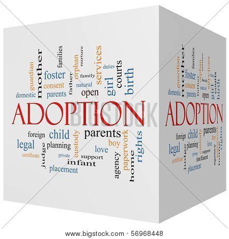 Adoption 3D Cube Word Cloud Concept