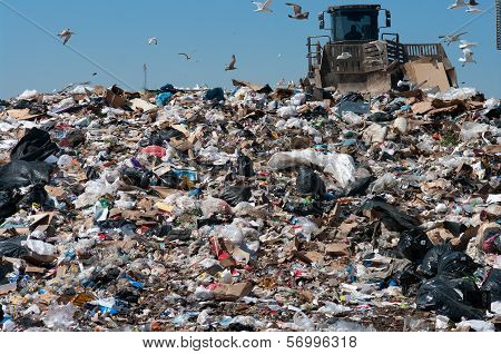 Compactor In Landfill