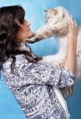 Charming young woman with Siberian cat on blue background poster