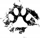 Grunge pet or cat paw print. Can be used as a background or as a minor design element. poster
