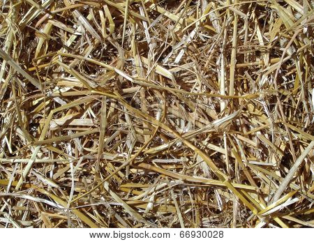 Background Of Golden Brown Straw
